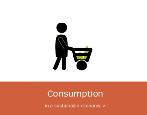 Consumption in a sustainable economy