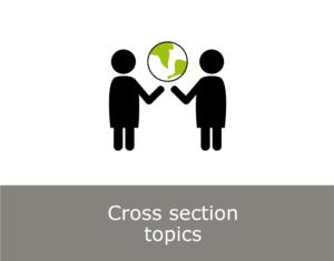 Cross sectional topics