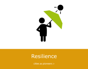 Resilient cities and their infrastructures as pioneers of change